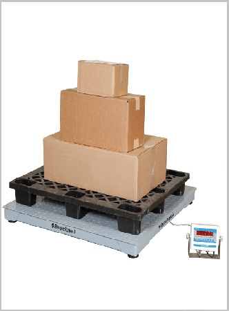 DSB Series Floor Scale Systems